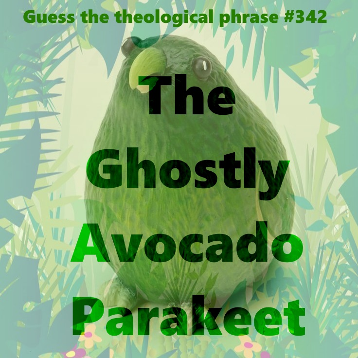 avocado parrot